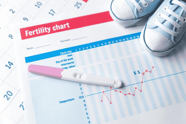 Quel est le jour plus le plus fertile pour tomber enceinte ?